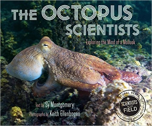 The Octopus Scientists.jpg