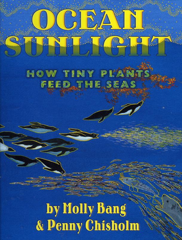 OceanSunlightWeb.jpg