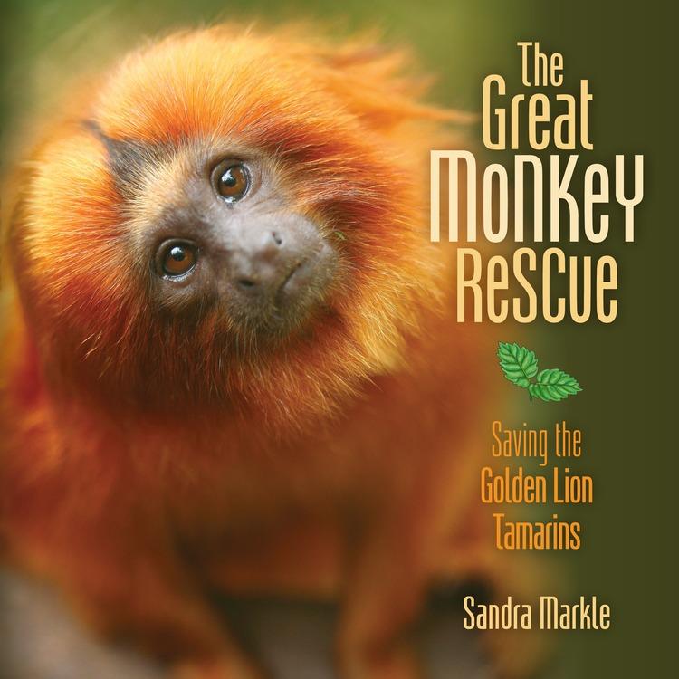 GreatMonkeyRescue-cover.jpg