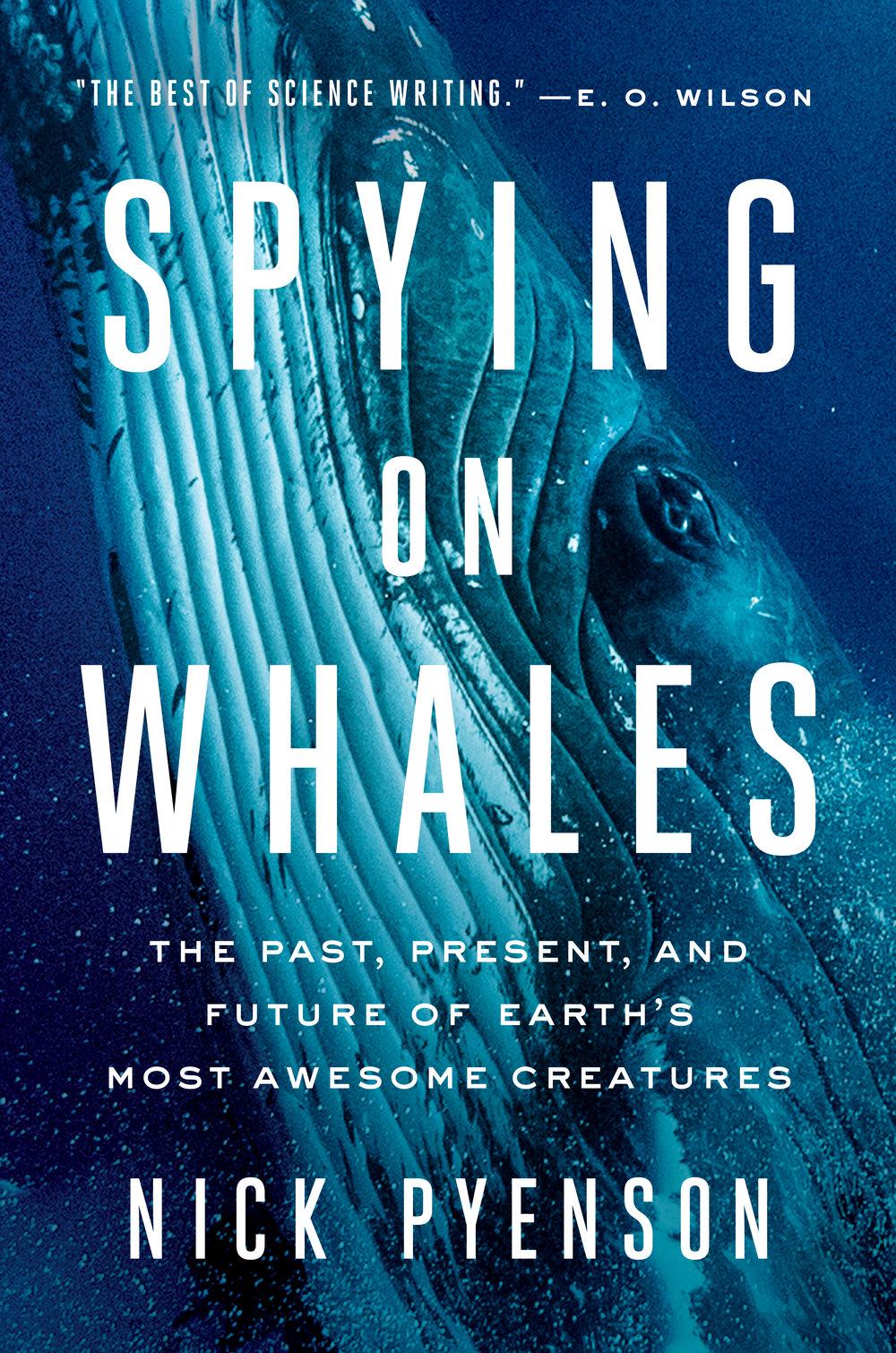 spyingonwhales.jpg