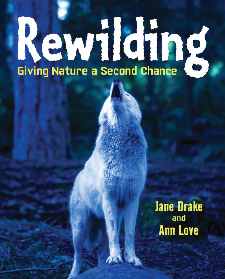 rewilding.jpg