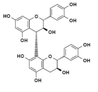 phenol2