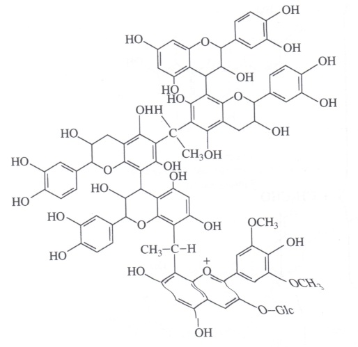 phenol3