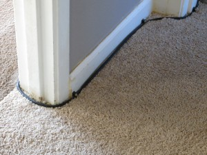 Cable on Carpet