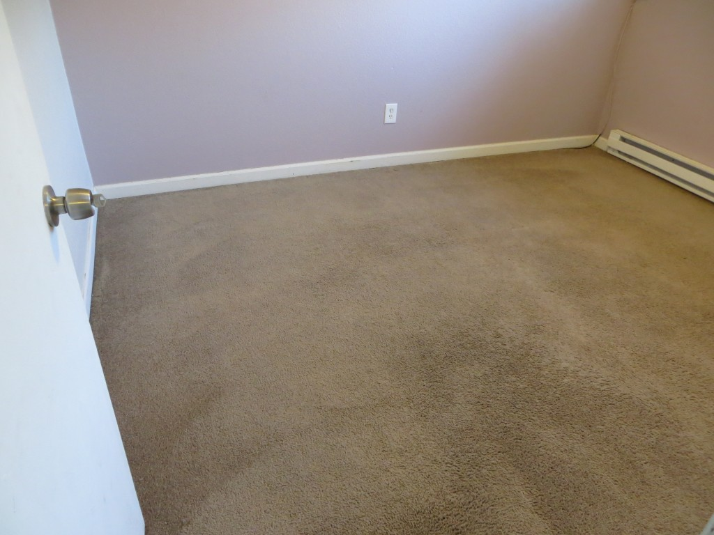 10 year old rental carpet