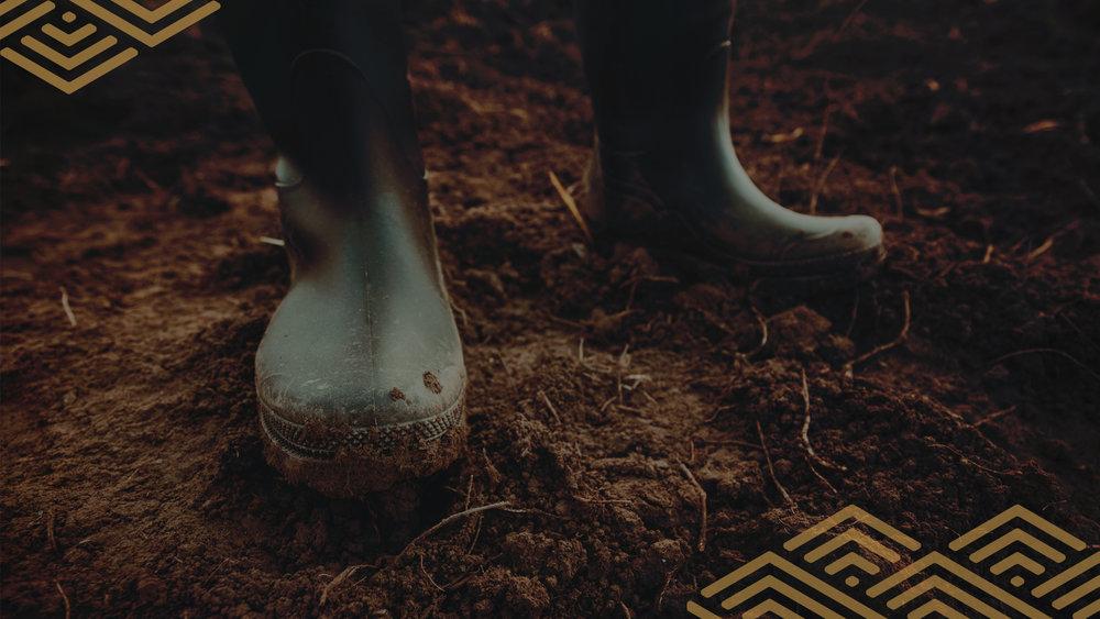boots ppt bg 1.jpg