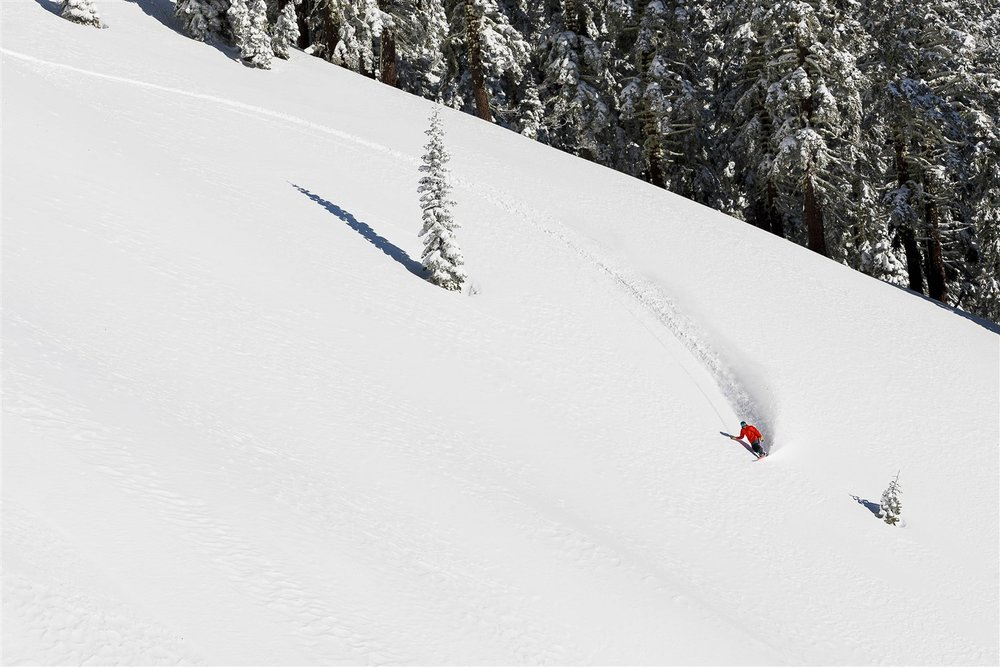 Surf's up at  Alpine Meadows , which is located 20 minutes from downtown Truckee—and from Dark Horse's freshly roasted coffee beans.  Courtesy Squaw Valley-Alpine Meadows