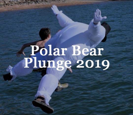 polar bear plunge.jpg