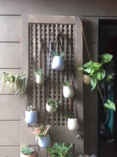 Hanging Wall Pots - Various Prices