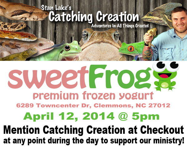 sweetfrogflier