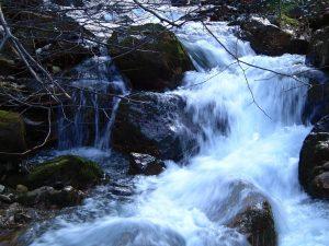 rapids-i-1517400-300x225.jpg