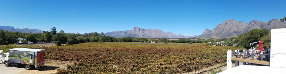 Vrede en Lust Wine Estate (click to enlarge)