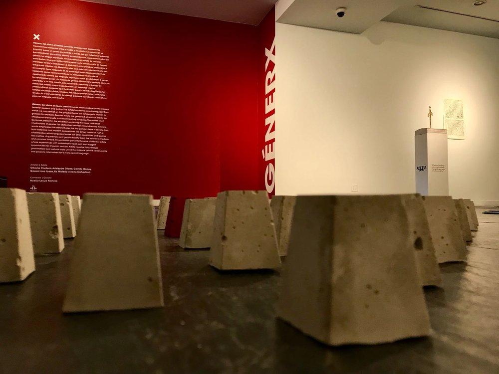 Exhibition:  Génerx: del dicho al hecho. Instituto Cervantes of New York. February 2018