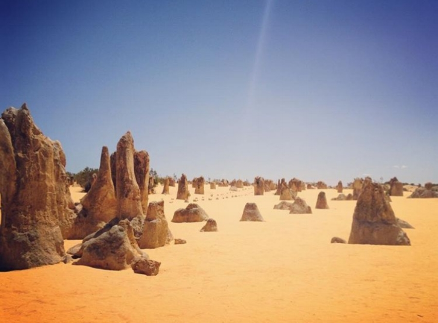(The Pinnacles - Lancelin)