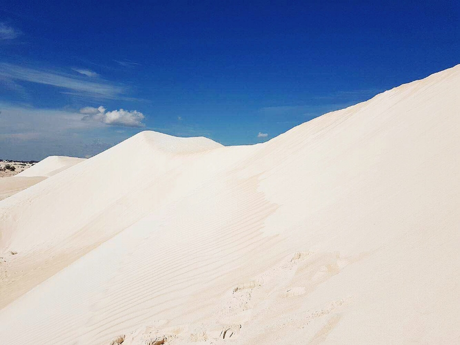 (The Sand Dunes - Lancelin)