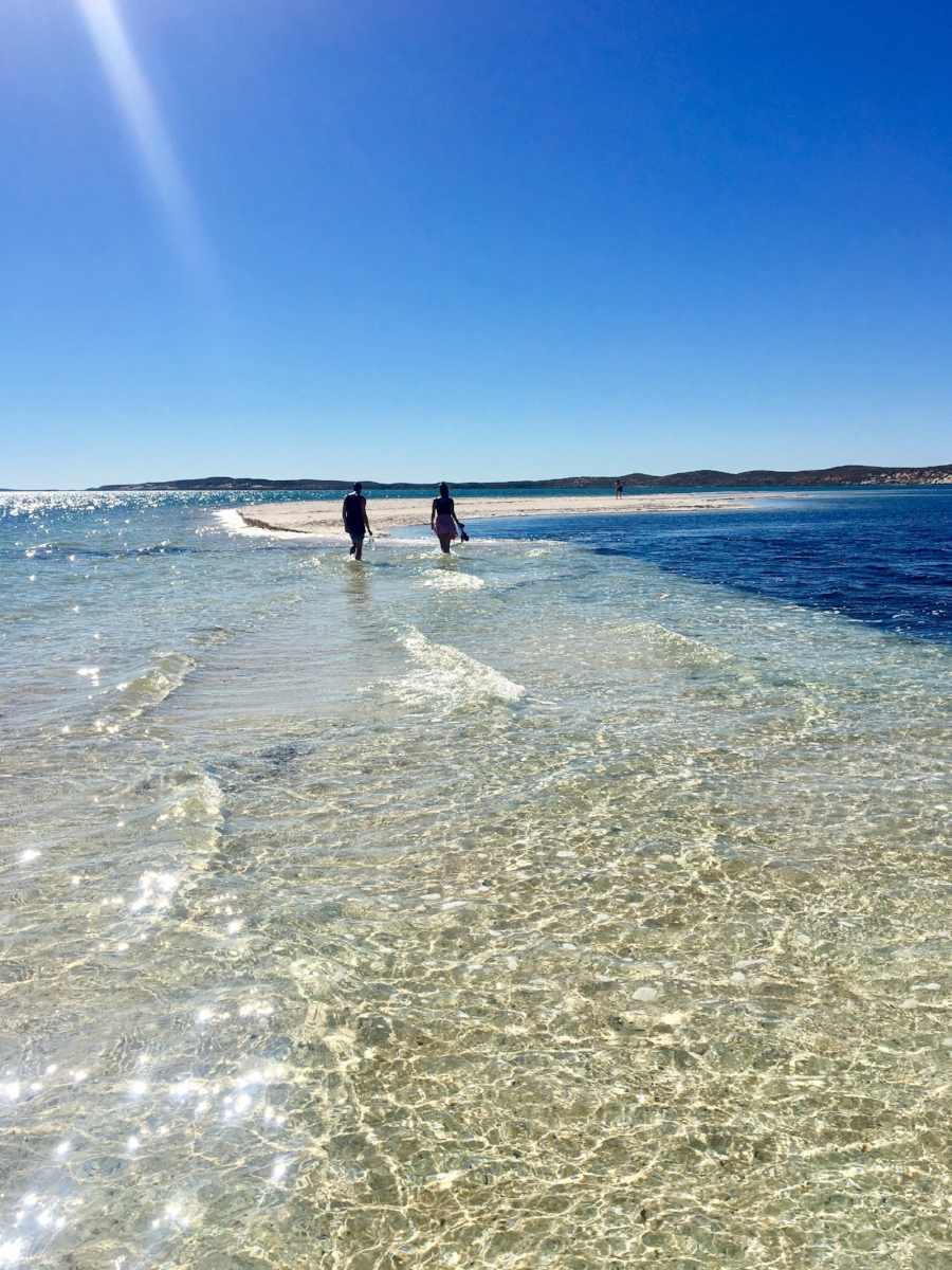 (Shells Beach - Shark Bay)