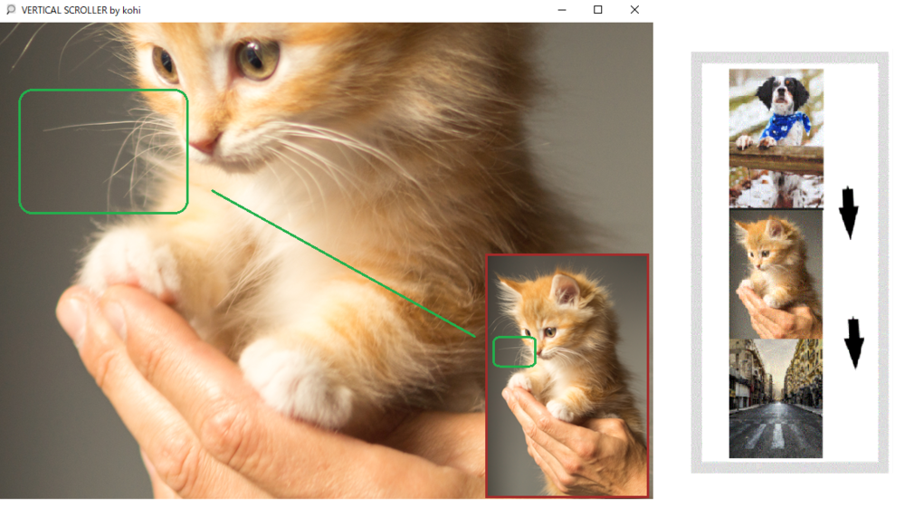 You can even see the kitten's whiskers ! Scrolled image example. / 子猫のひげまではっきり確認。スクロール画像例。