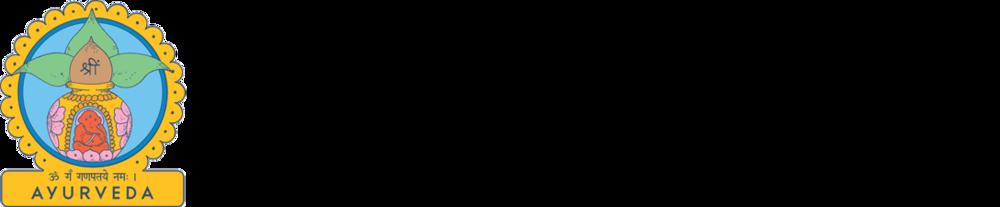 AI Full Logo.horiz-CMYK.png