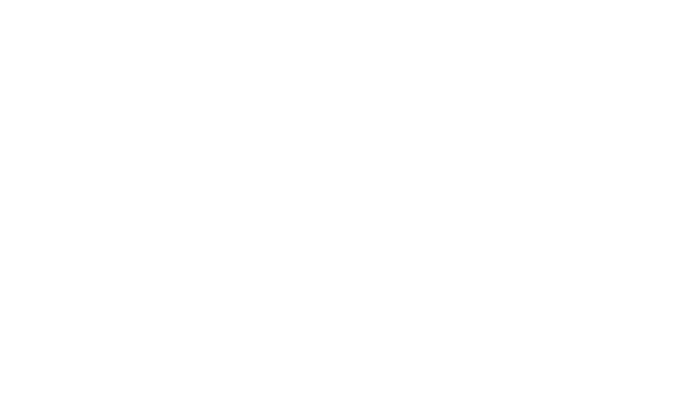 rebel-white.png