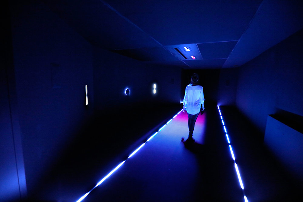 Hū is an immersive photographic experience