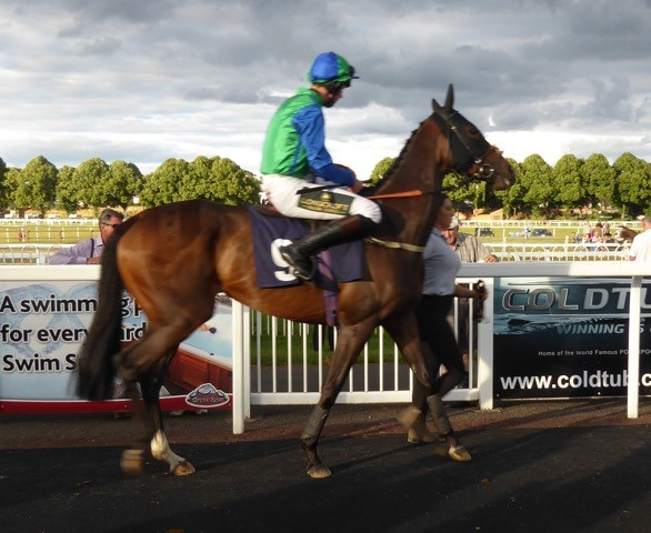 Sheila Tanist at Worcester for the Case Racing Partnership