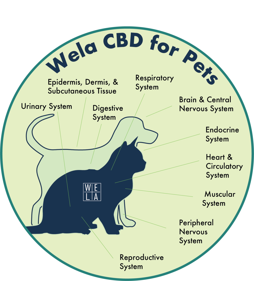 wela cbd for pets.png