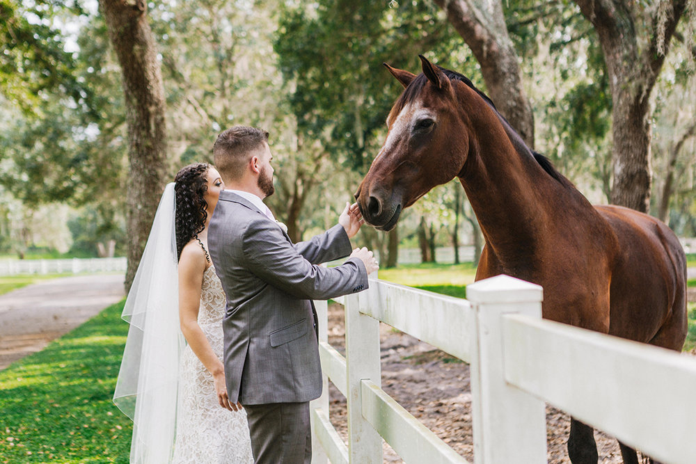 Lakeland-Wedding-Photographer_Wedding-at-The-Lange-Farm_Abby-and-Phillip_Zephyrhills-FL_1253.jpg