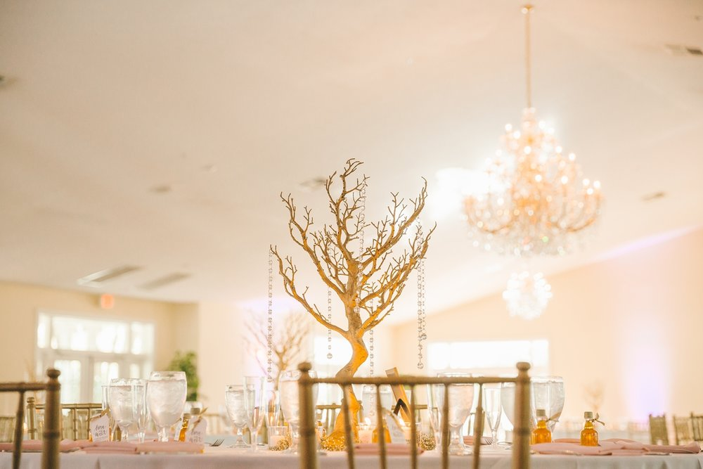 Tampa Area Florida Wedding Venue, Stonebridge at The Lange Farm_0221.jpg