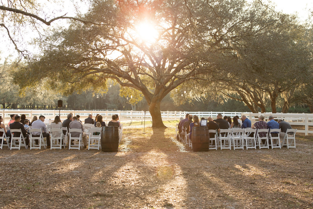 Outdoor Wedding beneath Oak Tree