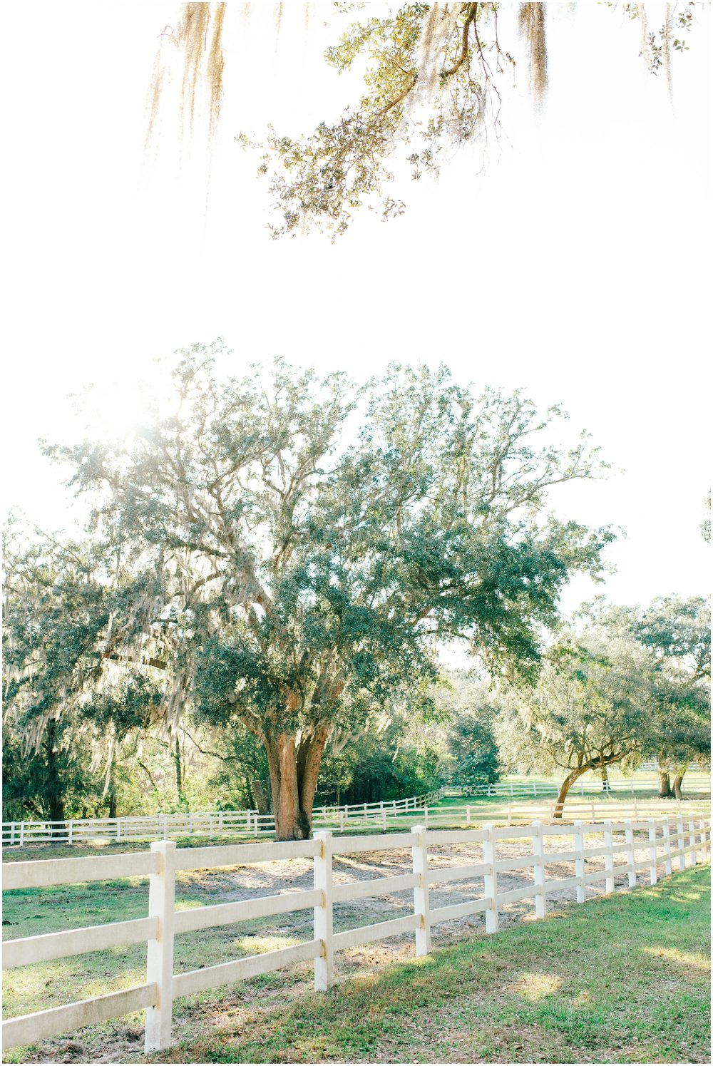 Tampa Area Wedding Venue with Southern Charm- Stonebridge Events_0277.jpg
