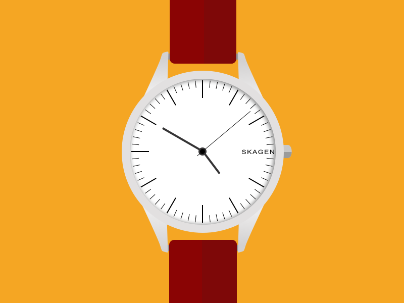 Skagen Watch.png