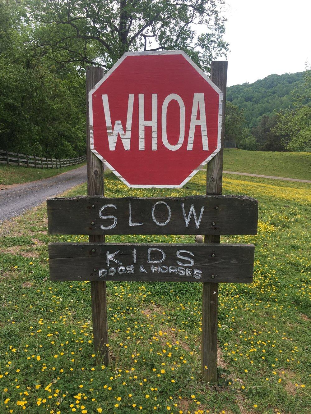 whoa slow kids sign.JPG