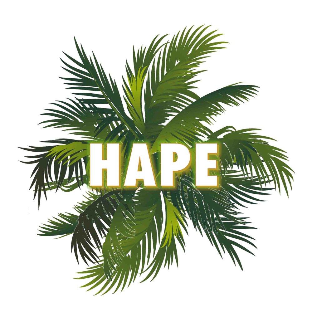 Logo-HAPE.jpg
