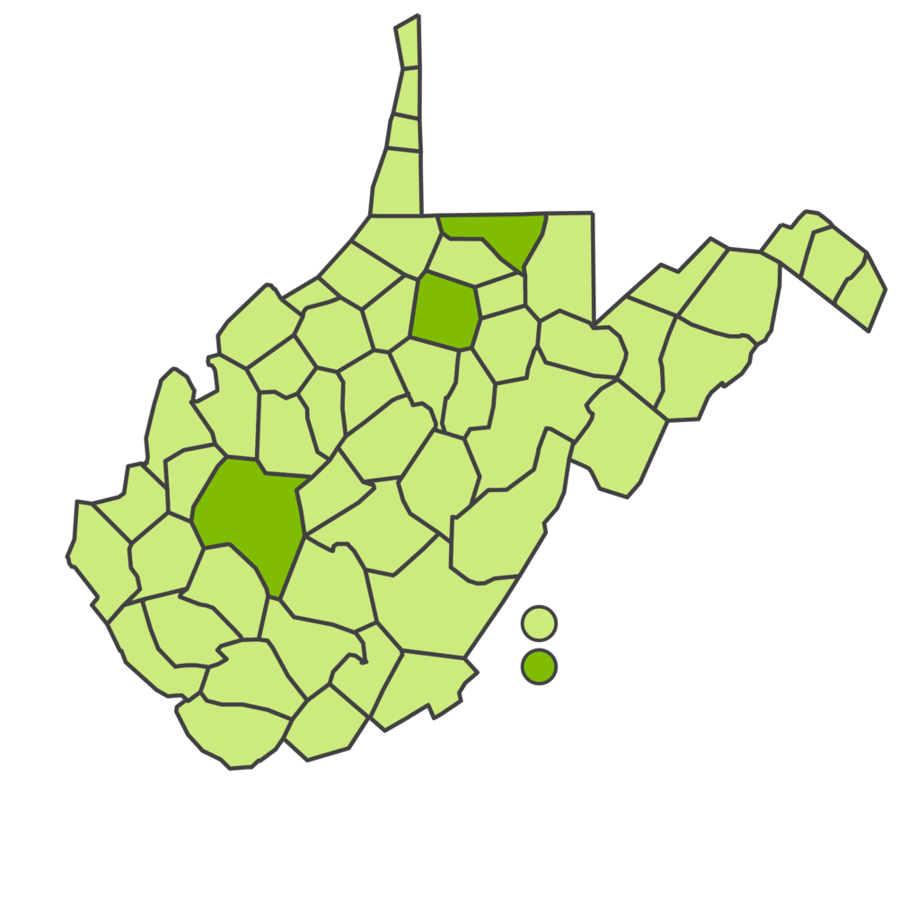 Taziki's Cafe Franchising | West Virginia Markets