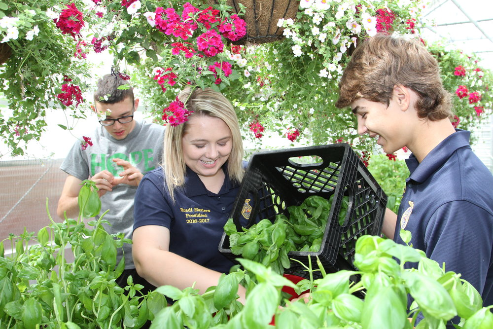FFA Students work with HOPE Students SCHS.jpg
