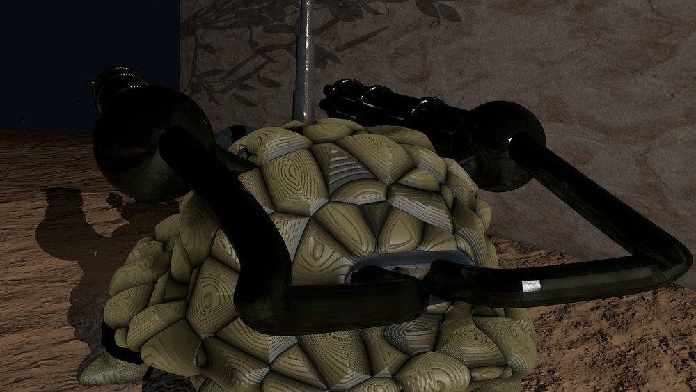 turtle detail 2.jpg