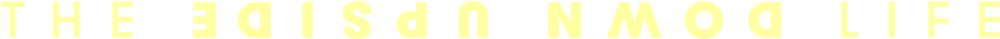 udl_logo_hor_yellow.png