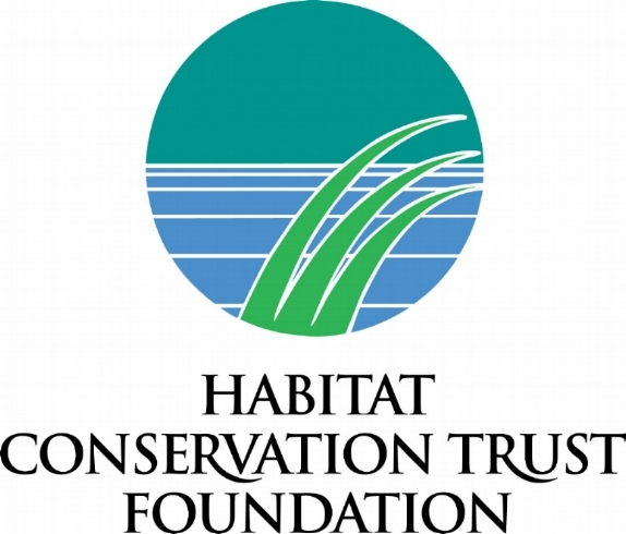 hctf new logolarge.jpg