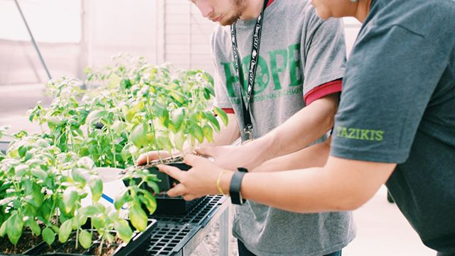 HOPE gives purpose. Students learn valuable personal and professional skills through the process of harvesting herbs.⠀ .⠀ .⠀ .⠀ #herbs #wegrowhope #spices #learning