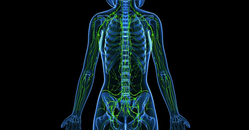 How-to-Cleanse-Your-Lymph-System-and-Why-You-Should.jpg