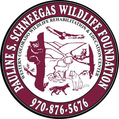 Pauline S. Schneegas Wildlife Foundation