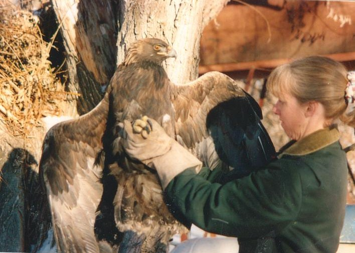 Founder Nanci Limbach with a golden eagle