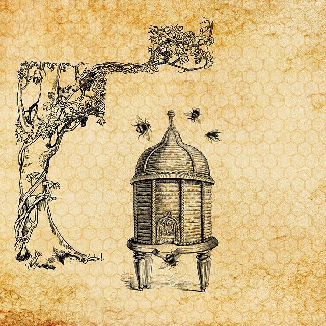 Image from Pixabay. https://pixabay.com/en/beehive-bee-vintage-honeycomb-3434143/