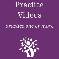 Practice Videos.png