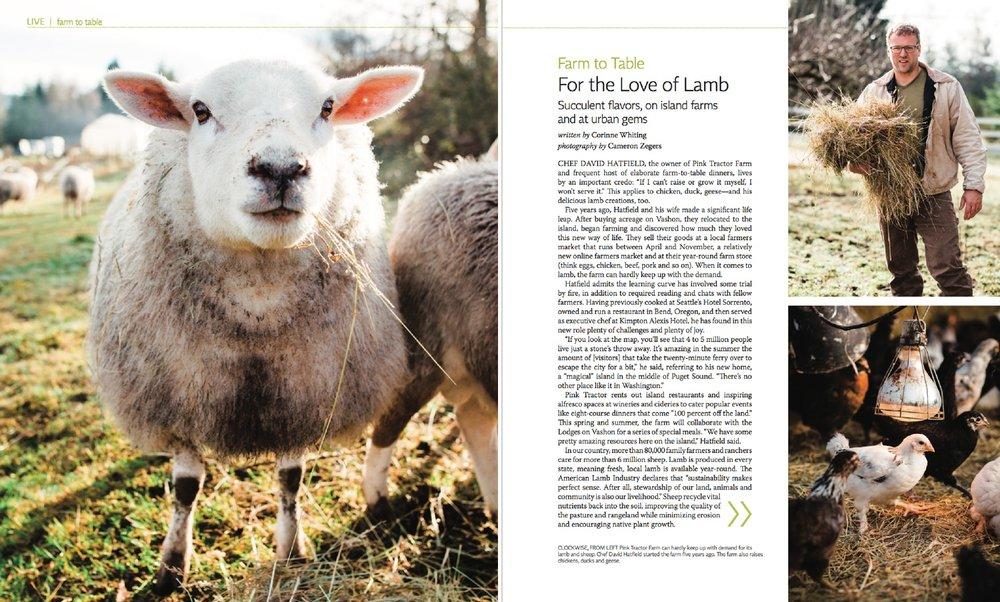 cameron-zegers-vashon-farm-magazine-photographer.jpg