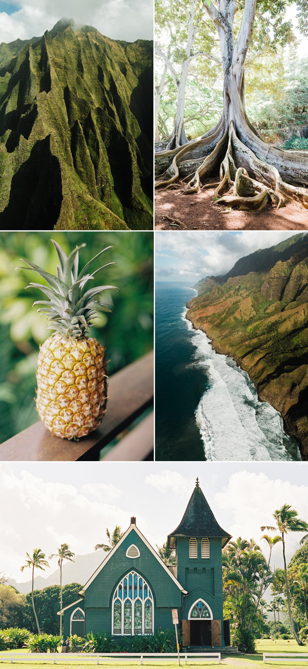 cameron-zegers-photography-travel-hawaii-kauai-5.jpg