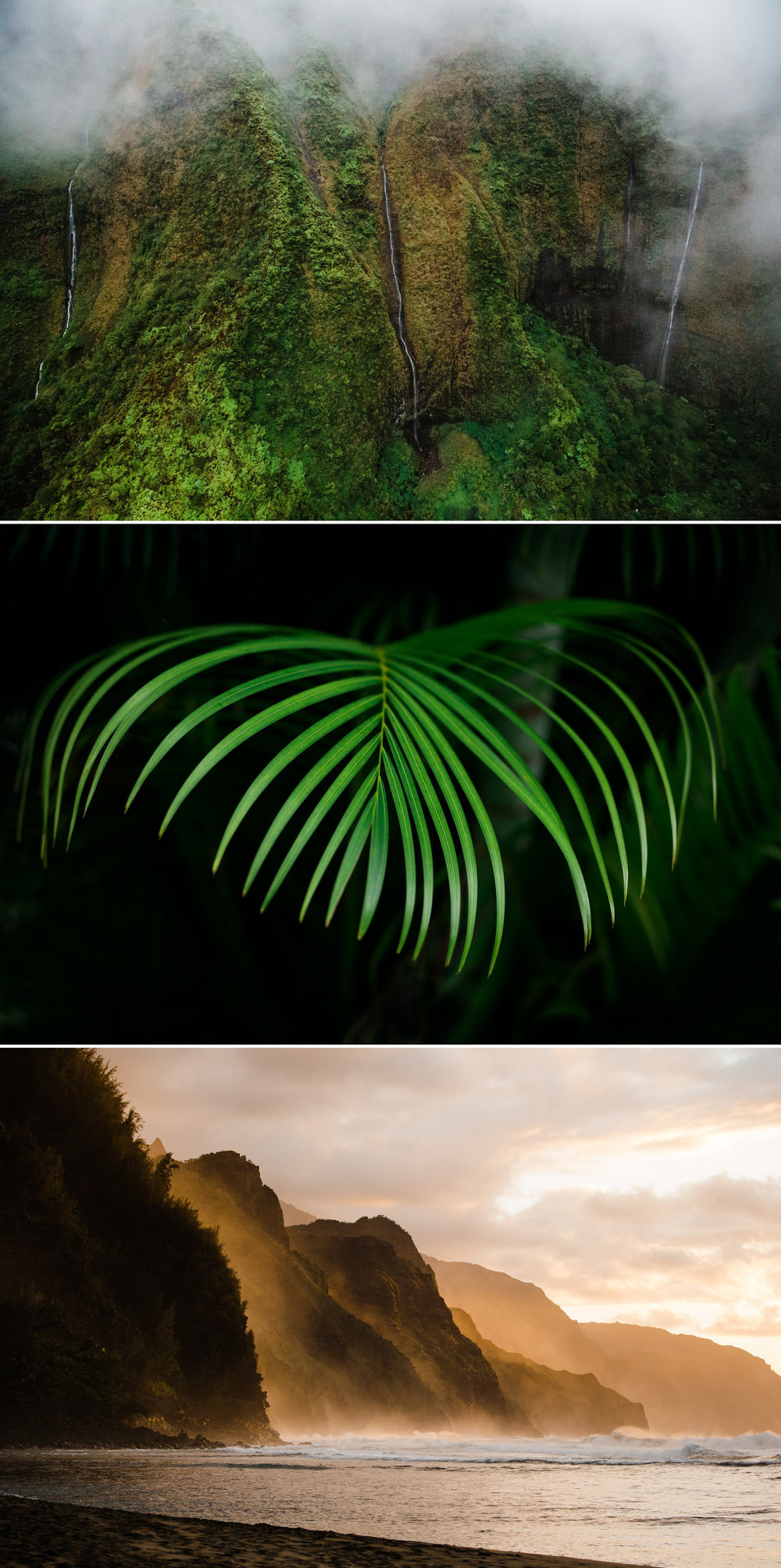 cameron-zegers-photography-travel-hawaii-kauai-13.jpg