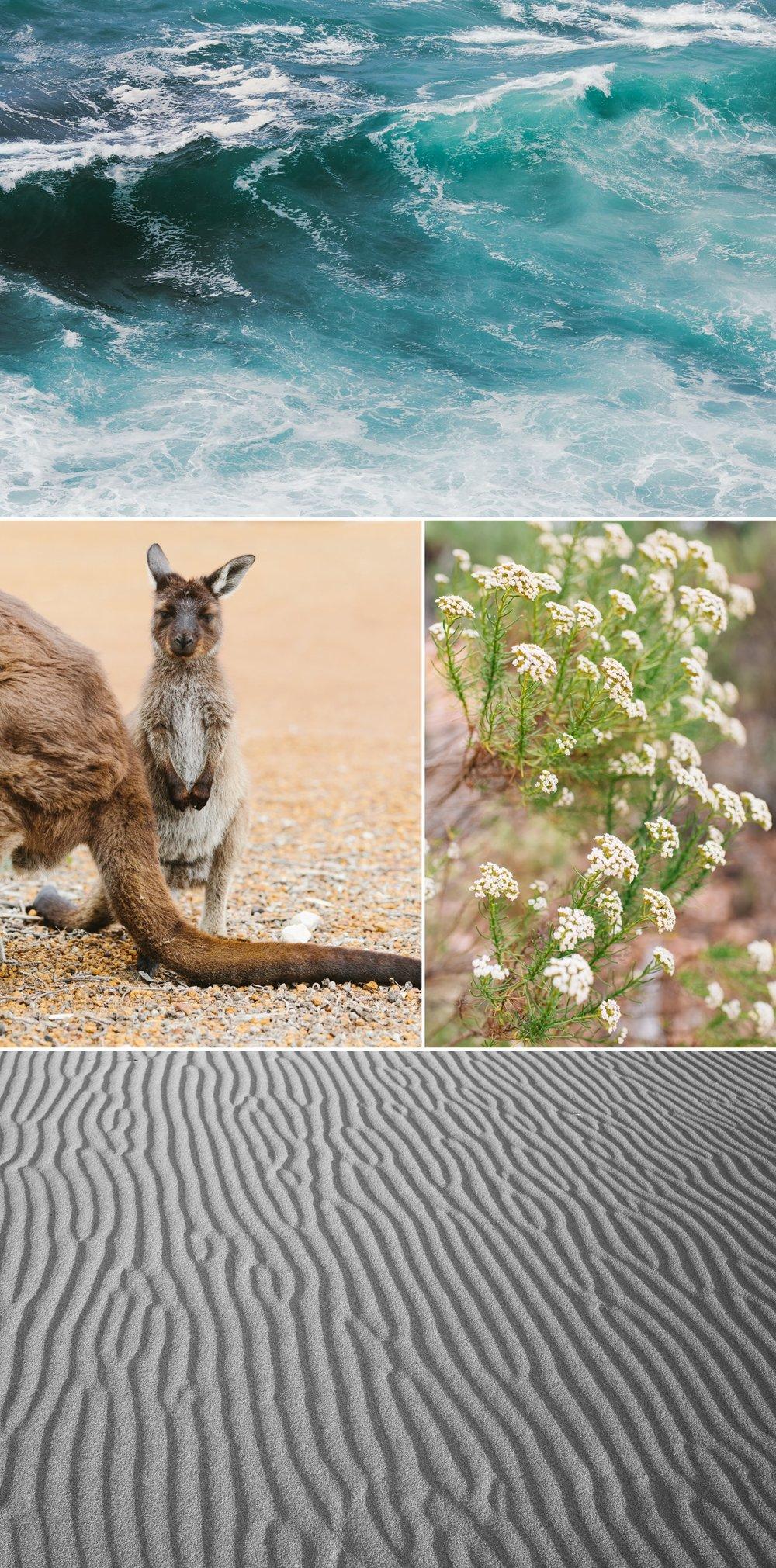 cameron-zegers-seattle-photographer-kangaroo-island-australia-travel_0011.jpg