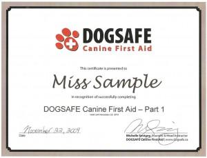DOGSAFE_Certificate_Example-300x229.jpg