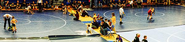 Wrestling2-WG17-AllanRowe.jpg